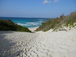 砂山ビーチの画像